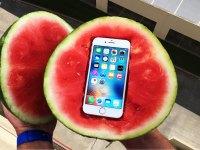Ochrání iPhonem před 30 metrovým pádem meloun? Tihle borci odpodívají na otázky, které vás nikdy nenapadly