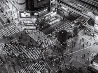 Fripito to vás nově provede Tokiem: Moderní megapolí naplněnou tradicemi