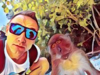 Aplikace GoArt promění vaše fotografie v umělecká díla na jedno kliknutí