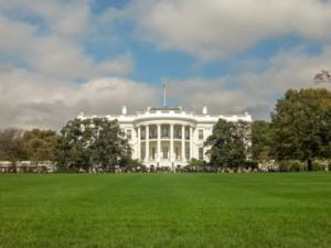 Fripito se rozrostlo o dalšího průvodce: Objevte Washington a všechny jeho krásy