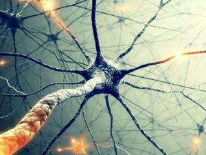 Neuronová síť automaticky vylepší vaše fotografie tak, aby vypadaly jako od profesionála