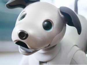 Sony představilo novou verzi robotického psa Aibo s umělou inteligencí