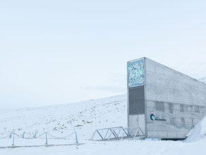 Norsko vynaloží 270 milionů na modernizaci globální semenné banky na Špicberkách