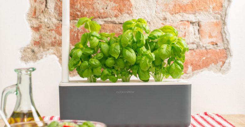 Recenze Click & Grow Smart Garden 3